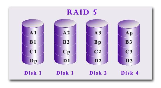 Raid Types